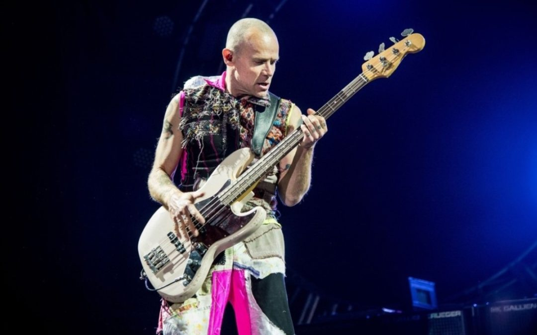 """Acid for the Children"": RHCP's Flea releases autobiography"